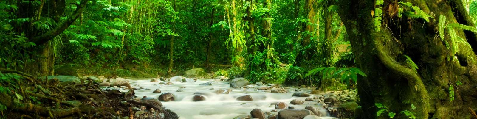 Costa Rica Immobili - Uffici, nuove costruzioni, alberghi - Costruisci, Investi, Affitta
