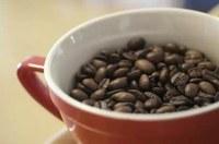 Gigante del caffè italiano acquista grande torrefattore in Costa Rica